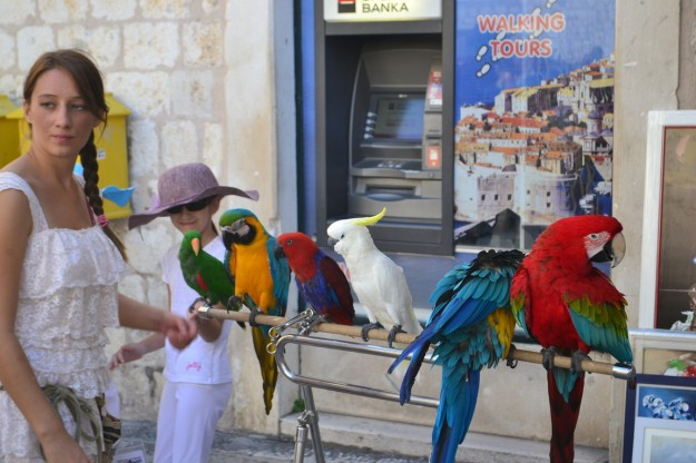 "Dubrovnik, la ""Perla del Adriático"""