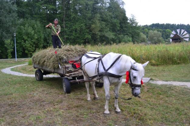 La ruralidad típica de los campos rumanos