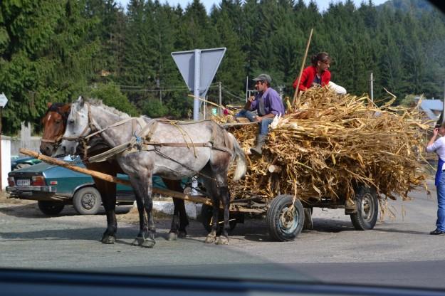 Vida rural en Curtea de Arges. Wallachia, Rumania