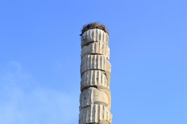 El Templo de Artemisa supo ver mejores tiempos...