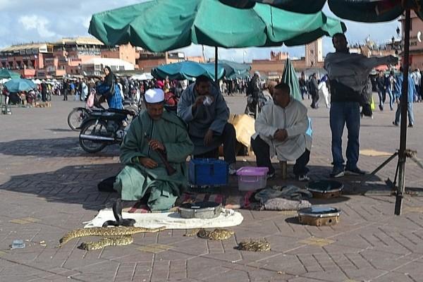 Encantadores de serpientes en Djemaa el Fna