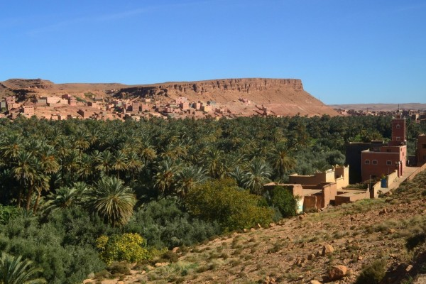 El oasis creado por Palmeral de Tinghir, que desciende del Todra
