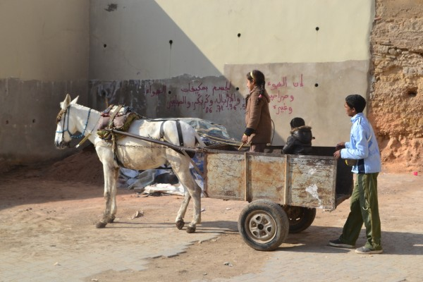 Imagenes típicas de Fez