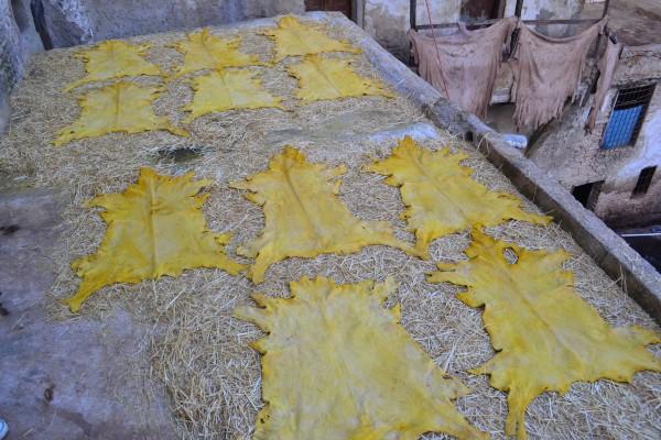 Retazos de cuero en etapa de secado