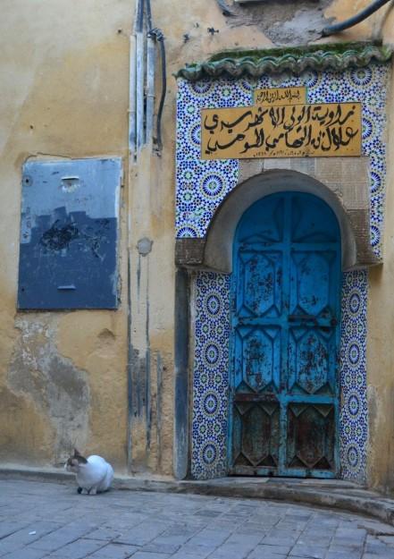 Imágenes típicas de Fez