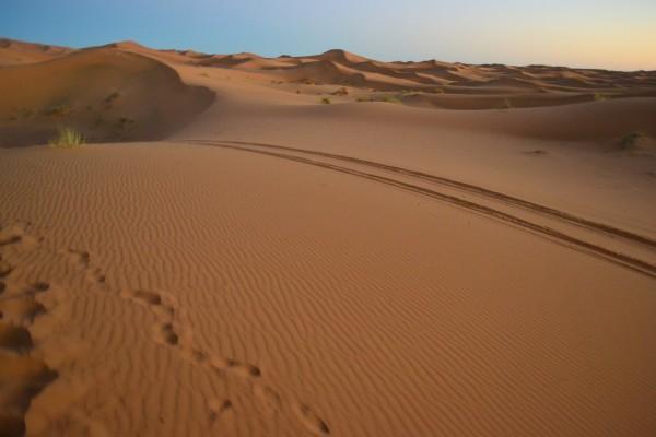 Desierto del Sahara, al atardecer