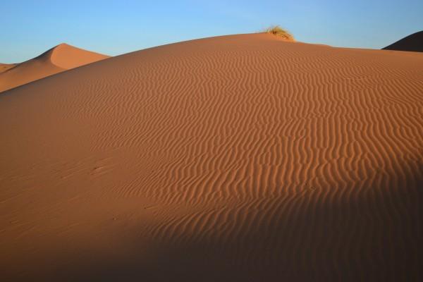 Las tradicionales líneas dibujadas en el desierto